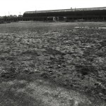 Harris Lebus old football ground on the paddock
